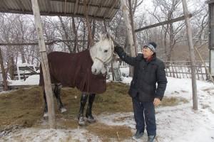 кони-3