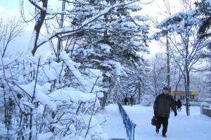 31.01.07-Снег-выпал-019
