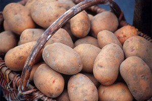картофель-тетерев