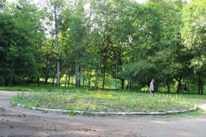В нашем парке хватит места и для реализации программы по благоустройству, и для воплощения проектов общественников