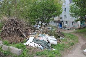 Крупногабаритный мусор должны убрать к 1 августа