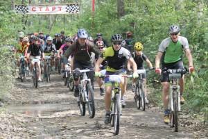 Уже на старте велосипедисты взяли быстрый темп