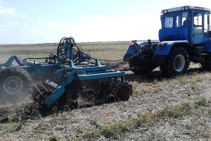 Овощеводы осваивают паевые земли и дальневосточные гектары