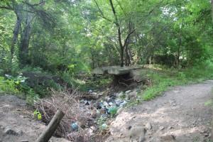 Несмотря на название, речка Черная должна быть чистой