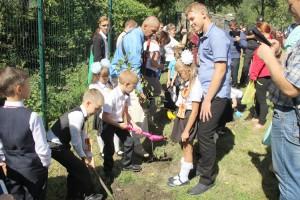 Деревья будут расти вместе со школьниками