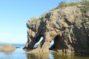 Островной каменный слон