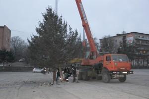 Главная елка Партизанска в этом году невысокая, но очень пушистая