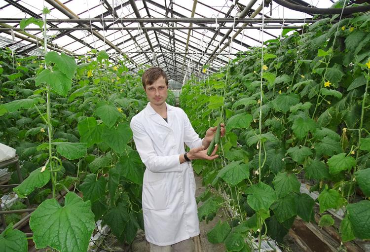 Работники сельского хозяйства внедряют новые технологии