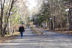 На продолжение реконструкции парка выделено более десяти миллионов