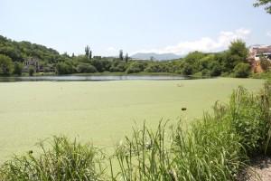 Постоянная течь из канализации может уничтожить озеро