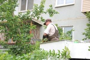 ООО «Сица» пилит аварийные деревья на улице Нагорной, 4