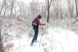 На беговых лыжах по снежной целине