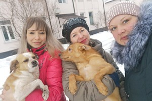 Защитницы животных Марина Пилипенко, Инна Чернявская и Анастасия Макарова