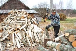 Через гортоп дрова можно купить гораздо дешевле, если собрать документы. Фото www.pinterest.de
