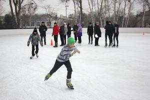 На ледовую площадку вышли сорок школьников
