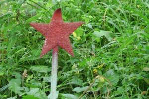 На могилах не осталось даже звезд